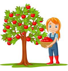 Girl farmer gathering apples in basket vector