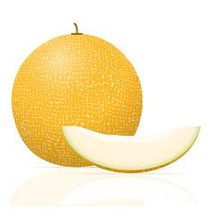 Melon 03 vector
