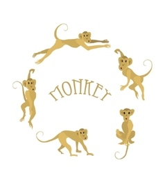 Set of monkeys vector