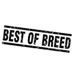 Square grunge black best of breed stamp vector