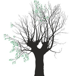 Young leaves on the old tree vector
