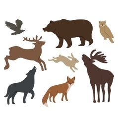 wild forest animals vector image