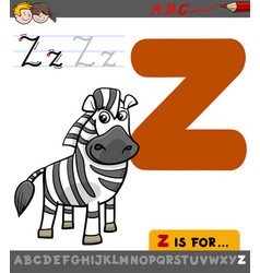 letter z with cartoon zebra vector image vector image
