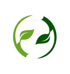 abstract circle green light dark leaf logo vector image
