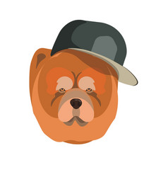 chow dog with dark cap breed close up vector image