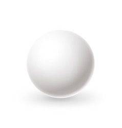 realistic white sphere blank billiard ball vector image