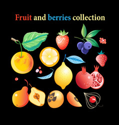 set bright tasty fruits and berries vector image
