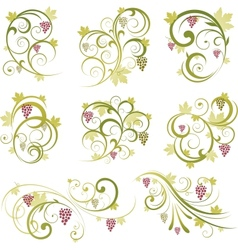 Set of wine grapes design elements vector