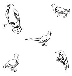 Birds Pencil sketch by hand vector image vector image