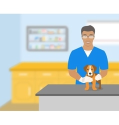 Man veterinarian holding a dog in veterinary vector image vector image