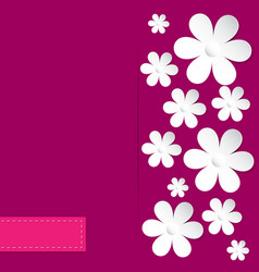 camomile pink background vector image