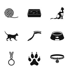 Cat equipment icons set simple style vector