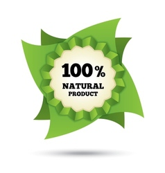 Eco icon green leaf Natural bio food vector