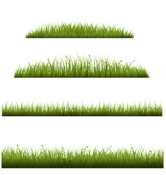 grass frame in transparent background vector image