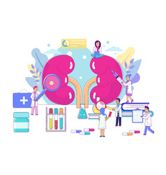 Kidney treatment doctor group concept vector