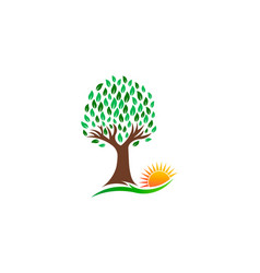 nature tree and vibrant sun logo vector image