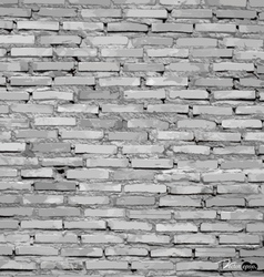 White grunge brick wall background vector image vector image