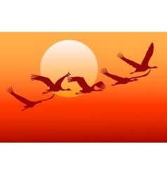 Flying crane vector image