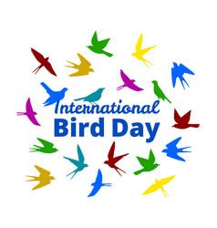 international bird day vector image