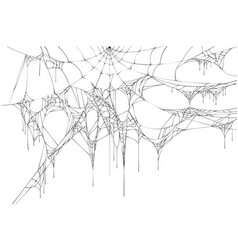 black large torn spider web on white background vector image