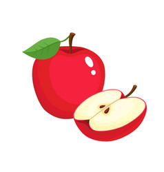 Bright of colorful juicy apple vector