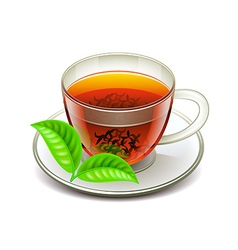 Ceylon tea isolated on white vector
