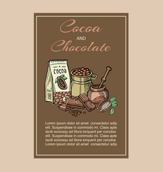 cocoa superfood organic healthy food vector image