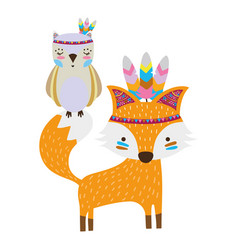 Colorful owl and fox animals with feathers design vector