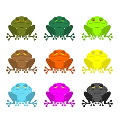 Frog color Set Colored toads Woody Orange frog vector