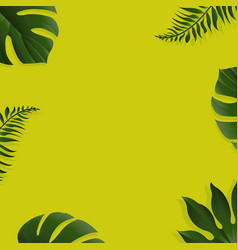 green background with tropical leaves vector image