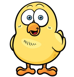 Little chicken vector
