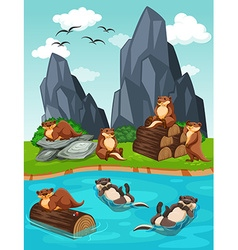 Otters living by the river vector