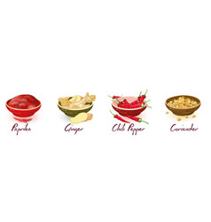 Paprika ginger chili pepper coriander in bowls vector