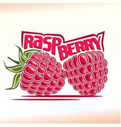 raspberry still life vector image vector image