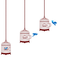 Bird leaving cage and return in the cage vector image vector image