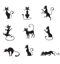 black graceful cats vector image