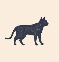 Cat silhouette concept design home animals vector