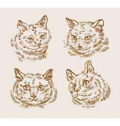 Collection of hand-drawn cats vector
