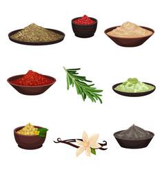 flat set of different seasonings organic vector image