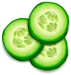 Fresh cucumber slice isolated on white background vector image