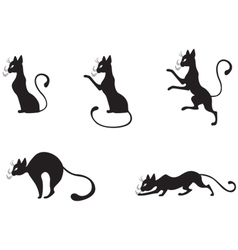 silhouettes of black cats vector image