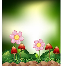 Mushroom and flowers vector image vector image