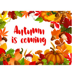 autumn nature frame of fall season poster template vector image