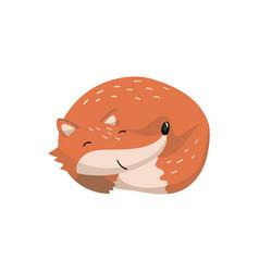 cute red fox sleeping woodland cartoon animal vector image
