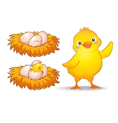 egg and little chicken vector image