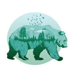 double exposure wild bear and forest vector image