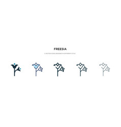 Freesia icon in different style two colored and vector