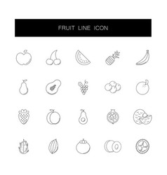line icons set fruit pack vector image