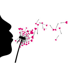 Valentine s background with love dandelion vector