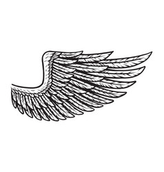 vintage bird wing monochrome concept vector image